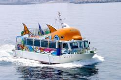 11.遊覧船(いるか号)