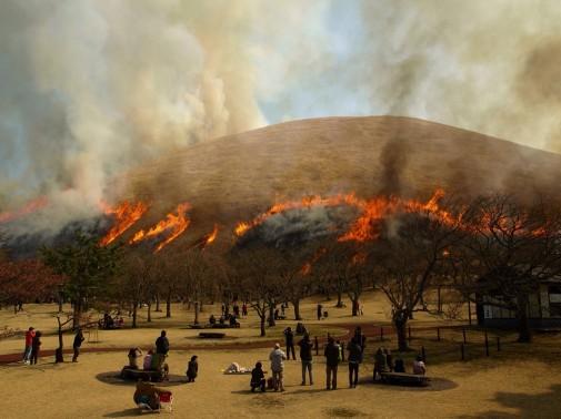炎が山肌を登っていきます