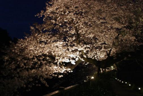 matsukawa-akari-3