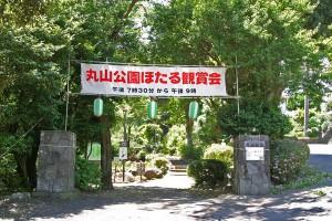 maruyama150604-1-300x200