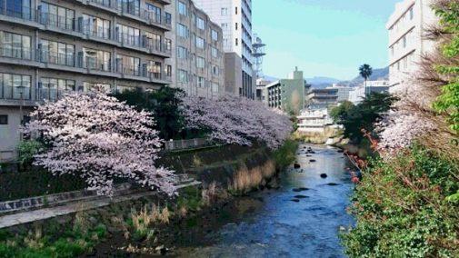 matsukawayuhodo160406-3