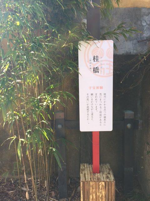 3桂橋(むすばれ橋)