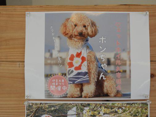 ぼんちゃんポスター