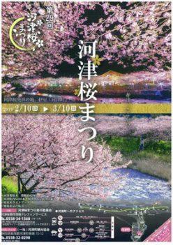 sakuramasturitirashi-1