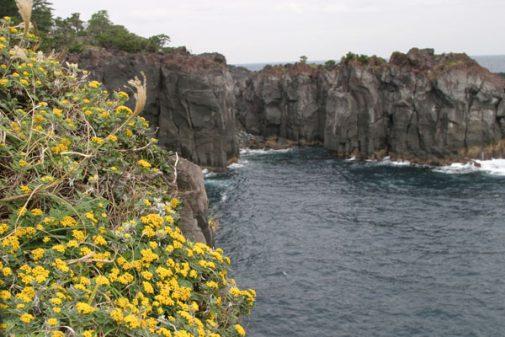 城ヶ崎海岸2