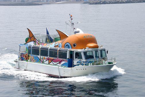 【伊東マリンタウン】遊覧船はるひら丸イルカ号
