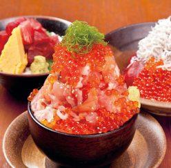 【伊東マリンタウン】海の前のカフェレストラン『漁師の漬け丼』