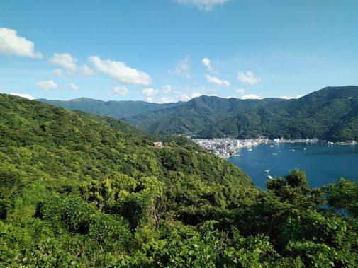 出逢い岬から見上げる達磨山