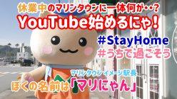 伊東マリンタウン公式youtubeチャンネル伊東マリにゃんタウン